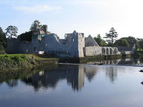 Adare Castle Ireland Map.Irish Castles Desmond Castle