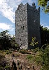 Ballintotis Castle