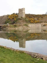 Ferrycarrig Castle