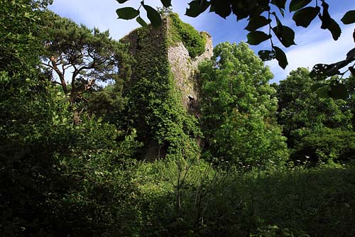 Wallstown Castle